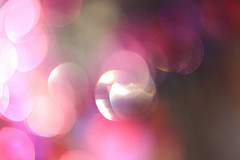 lovelight-texture-no-1-pink-glitterific